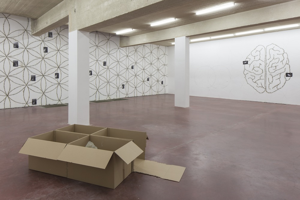 Mircea Cantor, 5775 (Part I), 2015, exhibition view - Floor -1 -2